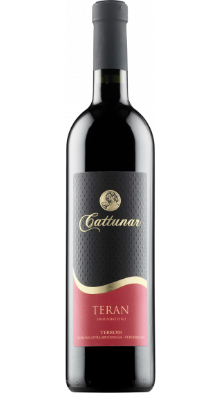 Bottle of Cattunar Teran 2013 wine 750 ml