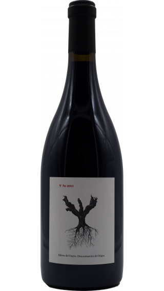 Bottle of Dominio de Pingus Psi 2015 wine 750 ml