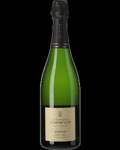 Champagne Agrapart Avizoise Blanc de Blancs Grand Cru 2013