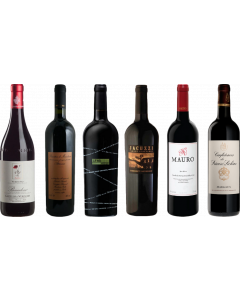8Wines Staff Picks Red Wine Tasting Case