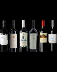 Argentinian Malbec Premium Tasting Case