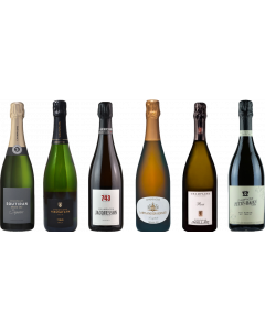 Grower Champagne Tasting Case