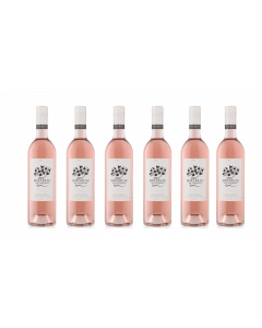 Mirabeau Classic Provence Rose 2019 6 Bottle Case