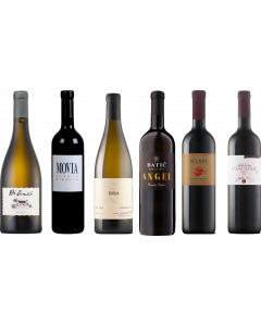 Slovenian Wine Tasting Case
