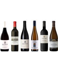 South African Wine Tasting Case