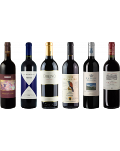 Super Tuscan Tasting Case